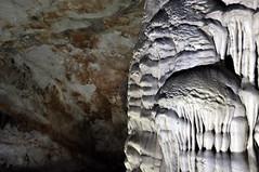 DSC_0946w (chripstopher) Tags: vietnam phongnhakebangnationalpark phongnha paradisecave cave spelunk spelunking stalagmite stalactite