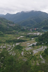 Banaue, Rice Terraces, Cordilleras, Ifugao, Northern Luzon, Philippines (ARNAUD_Z_VOYAGE) Tags: islands island philippines landscape boat sea southeast asia city people volcano amazing asian moutains sunset street action cars jeepney tricycle architecture river tourist capital town municipality baguio northern luzon filipino filipina colors building house provincial province village batad rice terraces cordilleras ifugao unesco world heritage altitude mountain mountains field