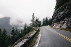 Road to Sunrise (Alexander Tran | atranphoto.com) Tags: mount rainier national park nps100 goparks findyourpark atran atranphoto atranfoto pnw washington wa wash fog foggy rainy road fuji fujifilm fujifilmxus xt1