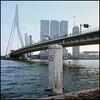 Rollie goes Rotterdam (07) (Hans Kerensky) Tags: rollei rolleiflex t model 3 tlr tessar 135 75mm lens kodak portra 160 film scanner plustek opticfilm 120 rotterdam october 2016 pier 35 erasmus bridge
