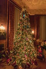 5D4_5033 (RjayP Photography) Tags: biltmore estate christmas tree xmas asheville northcarolina mansion