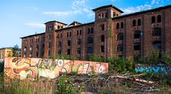 _DSC1300 (Under Color) Tags: leipzig graffiti lost places urban exploring leipsch walls