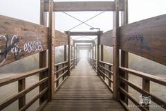 Niebla en Zaragoza - Adrian Sediles Embi (Sediles) Tags: adrinsedilesembi adrinsediles zaragoza niebla fog foggy riogllego santaisabel puente bridge zgz aragn espaa spain eltiempoenzaragoza tiempozaragoza zaragozaespaa noticiaszaragoza fotozaragoza