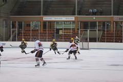 Hockey, LIU Post vs Princeton 38 (Philip Lundgren) Tags: princeton newjersey usa