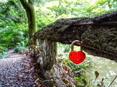 Jardin botanique de kyoto (schneider_sebastien) Tags: lovepadlocks cadenas amour love