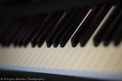 Ivory and Bokeh (Douglas Bawden Photography) Tags: musician bokeh piano musicalinstrument shallowdepthoffield cs4 canonef85mmf18 canoncamera primelens fullframesensor canonprimelens yamahapiano canoneos6d ivoryandbokeh