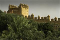 Chellah / Rabat / Walls / Morocco (zilverbat.) Tags: travel green castle nature gardens ancient roman culture morocco empire sultan walls visitors remains necropolis royalpalace rabat muur chellah