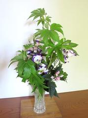 : Raspberry and Eustoma (sui ()) Tags: party summer japan ikebana raspberry eustoma  japaneseflowerarrangement