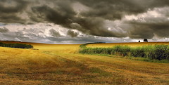 (Eric Goncalves) Tags: trees light summer england sky color nature clouds landscape gloucestershire hedge fields array canon7d ericgoncalves