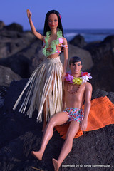 Superstar Hawaiian Barbie in Hawaii (FabCityCindy) Tags: kauaibeach beachbarbie superstarbarbie 16diorama hawaiibarbie cindyhammerquist fabcitytoys hawaiianbarbieken 16barbie