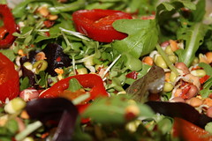 Rocket salad,red jalapenos and sprouted lentils (WorldClick) Tags: red sun crimson cheese canon island photography eos ginger baking photo salad juicy healthy flickr king photographer herbs fig burger cucumber tomatoes walnuts vivid peanuts raisins fresh dressing pizza lettuce potato hut health honey photograph grapes lambs mustard peppers rocket rays onion ruby chilli capture coriander cilantro beetroot paprika crunch cheddar thousand figs italiano sundried chard mozzerella redonions phototgraphy lambslettuce 1100d canoneos1100d saladwithlambslettuce tomatoesandspringonions worldclick redrubychardandfigsandtoppedwithamustardandhoneydressing