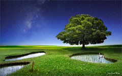 Loch swain (Jean-Michel Priaux) Tags: sky tree green nature pool night photoshop painting golf landscape star pond lonely fairway paysage milkyway lonesome mattepainting swain priaux mygearandme paintingmatte paintmapping