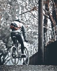Autumn / Taiep! (father TU) Tags: autumn fixie fixedgear pista trackbike chromebag fathertu