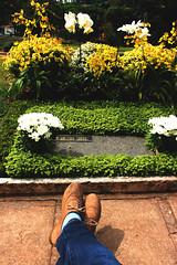 ~Jenniré Narváez (TheJennire) Tags: camera flowers light sun flores flower cute luz sol girl cemetery socks canon cores photography photo shoes day colours peace foto place pants flor dia poetic calm colores oxford cemitério moment fotografia camara meias medias oxfordshoes cementério