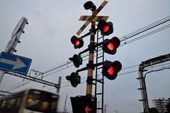 Warning Lamps at Keio Line Railroad Crossing (ykanazawa1999) Tags: railroad lamp japan warning tokyo crossing chofu kokuryo