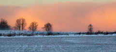Pending Snowstorm at sunset (pbruch) Tags: trees winter snow field squall farm country