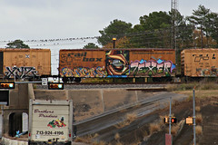 (o texano) Tags: bench graffiti texas houston trains sangre freights texer benching