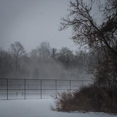 Snow, Fog