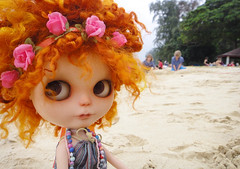 Pome-chan by the beach