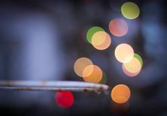 Alley oop! (susivinh) Tags: macro colors lights luces colours basket bokeh colores round canasta dots redondo score puntos crculos alleyoop