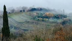 Valdorcia 7 (explored) (lotti roberto) Tags: valdorcia tosc tuscany landscape paesaggio nebbia colline fog day fav25 fav50 fav75 fav100 fav125 fav150 fav175 fav200 fav225 fav250 fav275 fav300 fav325 fav350 fav375 fav400