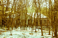 Pripyat, Chernobyl (Impétraz) Tags: travel traveling chernobyl ucrania ucraine pripyat