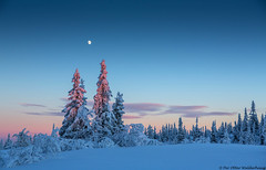 Winter Wonderland :) (Pewald) Tags: winter sunset moon mountain snow cold norway landscape 16c