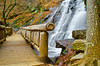 Juney Whank Falls (Bradley Nash Burgess) Tags: longexposure bridge winter leaves waterfall nationalpark nikon raw falls waterblur deepcreek greatsmokymountainsnationalpark gsmnp juney juneywhankfalls whank d7000 juneywhank nikond7000 junywhank