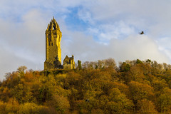 (Gerard Puigmal) Tags: trees winter sky bird monument clouds forest scotland flying stirling tourists wallace