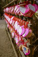 Wakamiya Shrine IV (Uwe Seiler) Tags: japan fuji nara fujix100s x100s 20140123