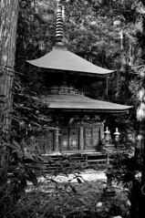 Chokoku-ji Sado (Myajima) Tags: japan temple pagoda shrine buddhism bouddha 日本 rabbits japon sado nihon bouddhisme pagode lapins sadogashima chokokuji