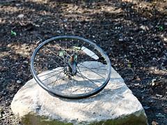 Rock Wheel. (Omygodtom) Tags: park shadow portrait art wheel rock nikon bokeh odd pdx tamron tamron90mm d7000