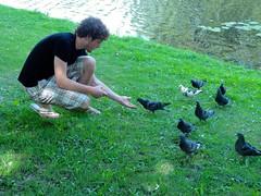 Bram voert vogels
