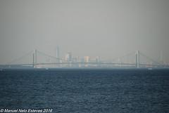 2016.10.18; Bayshore Waterfront Park-8 (FOTOGRAFIA.Nelo.Esteves) Tags: 2016 neloesteves nikon d80 usa us nj newjersey monmouthcounty bayshore waterfront park raritan sandy hook bay nyc marina