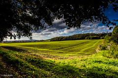 298 ~ 366 (BGDL) Tags: lightroomcc nikond7000 bgdl landscape goingfor4inarow~366 afsnikkor18105mm13556g farmland countryside rural auchincruive ayrshire