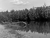 Parona (VR) (santoni.matteo) Tags: parona verona italy adige river water paesaggioitaliano largeformat grandeformato 10x12 4x5 fomapan100 blackwhite biancoenero yamasaki copal copaln01