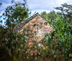 Building Through The Bushes (Sean McCammon) Tags: d600 upton country park gardens manor old building architecture