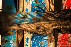 """""""Migrantes en color"""" (allabar8769) Tags: catedral colores interior italia maderas noto patera sicilia texturas"""