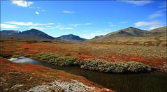 Highlands ll (TrondSphoto) Tags: rondanenationalpark drlen vassberget nordrehammeren september fall autumncolors water pond sediments sky trondsphoto