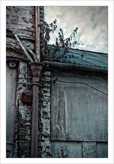Long Beyond Repair. (Mikec77) Tags: dereliction lackofmaintenance