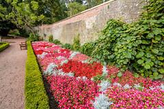 IMG_4831_adj (md93) Tags: belleisle park gardens ayr south ayrshire flowers