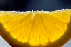 Backlit slice - Macro Mondays (BLEUnord) Tags: macro mondays macromondays hmm backlit contrejour slice tranche fruit