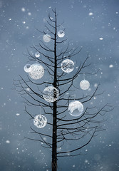 it's beginning to look a lot like Christmas (marianna_a.) Tags: christmas tree charliebrown bare decorated balls decorations holidays snow winter simple centered balanced abstract mariannaarmata frozenbubble frozen bubbles soap floating blue graphic