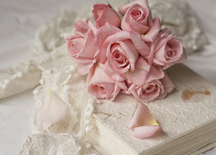 sweet pink roses ( *..CAH.. * ) Tags: pink pastelpink softcolours softlight romantic rose romanticrose stilllife delicate pastel flower