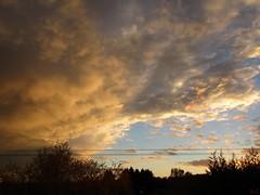 Prsage  (ricMon chemin ) Tags: sky cloud clouds sunset outside quiet nature paysage landscape arbres tree trees colours automne autumn autunno herbst novembre november 2016 bleu blue orange canon