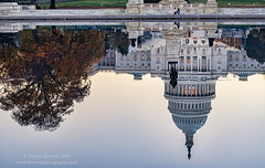 Morning Walk (Dwood Photography) Tags: us capitol uscapitol washington dc washingtondc dwoodphotography dwoodphotographycom 2016 reflection orange brown white ulysses s grant memorial ulyssessgrantmemorial reflecting pool capitolreflectingpool
