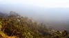 IMG_7727 (Siva-G) Tags: topstation trekking theni