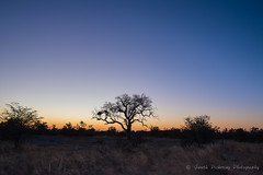 Elephant Sands - sunset
