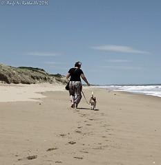 Ocean Grove Beach (niscratz) Tags: 2016 victoria australia oceangrove oceangrovebeach