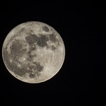 Super Moon Nov 14 2016 thumbnail